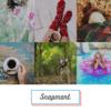 写真素材・画像素材-自然でおしゃれならスナップマート | Snapmart